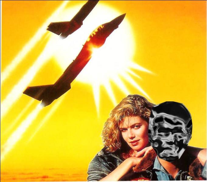 Top Gun est le film qui l'a rendu véritablement célèbre dans le monde entier. C'est :