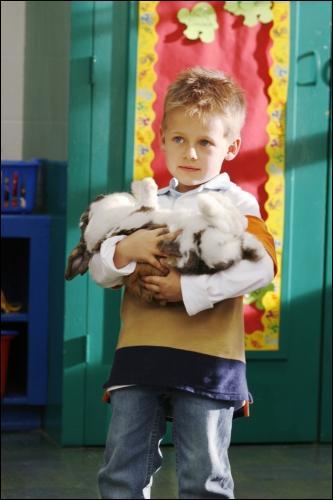 Pourquoi Jamy avait apporté son lapin à l'école?