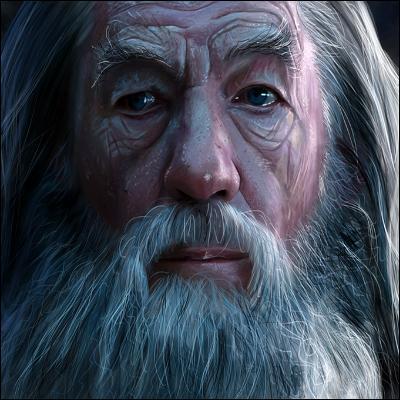 Dans la série des ressemblances évidentes, à qui peut-on comparer Gandalf le Gris ?