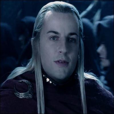 L'elfe Haldir ressemble beaucoup à un personnage de l'univers d'Harry Potter. Lequel ?