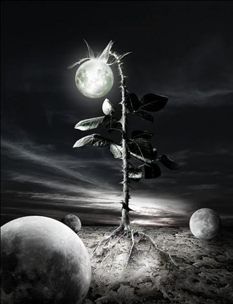 Qui a écrit  La nuit des temps  ?