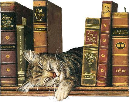 Quelques romans célèbres