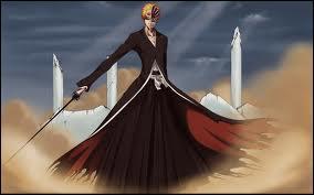 Quel est le nom du Zanpakuto d'Ichigo ?