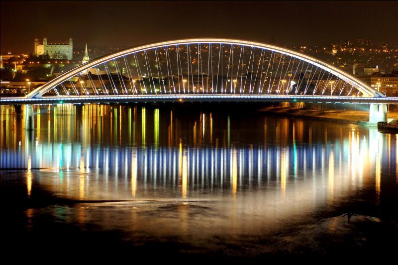 Quelle affirmation à propos de Bratislava, la capitale de la Slovaquie, est-elle fausse ?