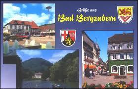 Pour commencer cette promenade franco-allemande, je vous emmène à Bad-Bergzabern. Nous serons ...