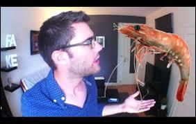 Dans quelle vidéo Cyprien dit  qu'une écrevisse ne ressemble pas à un fruit de mer mais pourtant ça s'appelle quand même un fruit de mer  ?