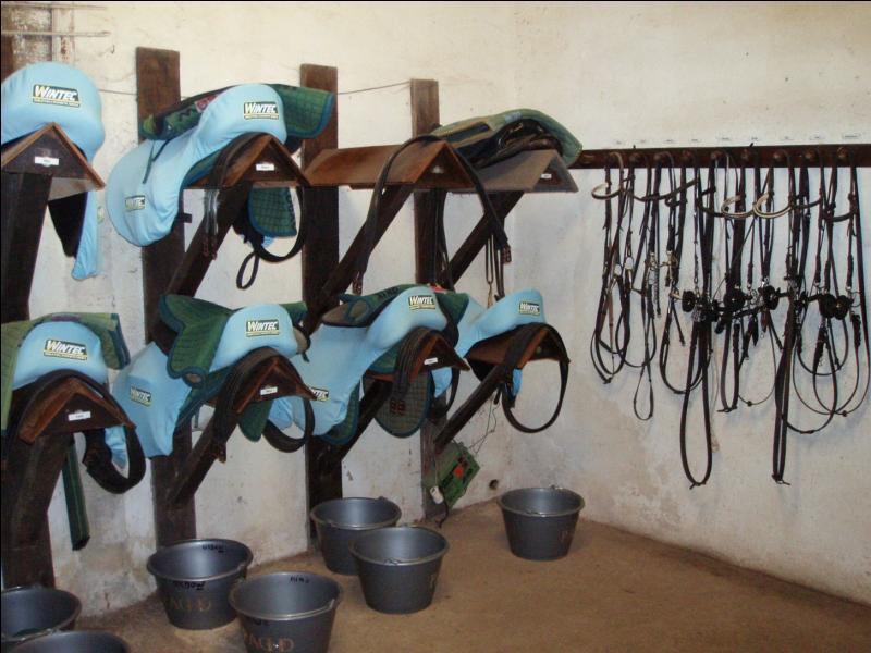Comment s'appelle cette partie du centre équestre ou du poney-club ?