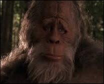 Quelle famille recueille un bigfoot dans un film de 1987 ?