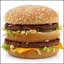 Dans quel restaurant pouvez-vous commander cet hamburger ?