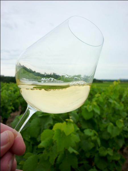 Avec un petit vin blanc de la Loire Atlantique :