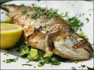 On vous propose un poisson :