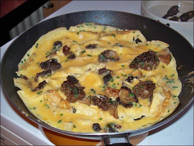 Suivra une petite omelette aux :