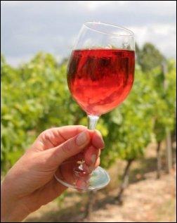 Quel est ce vin rosé du Gard qui accompagnera aussi bien la viande que le poisson ?