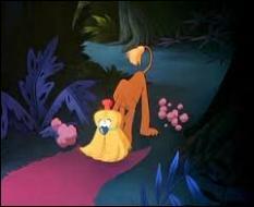 Dans quel film croise-t-on un étrange  chien-balai  ?