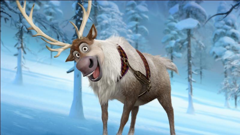 Quel est le nom du renne ?