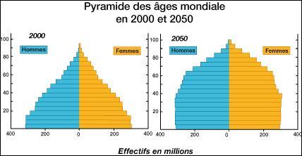 Que représente la pyramide des âges ?