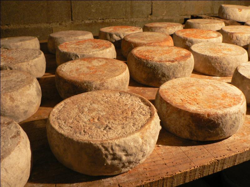 Comment s'appelle ce vigoureux fromage corse à base de lait de chèvre ou de brebis ?