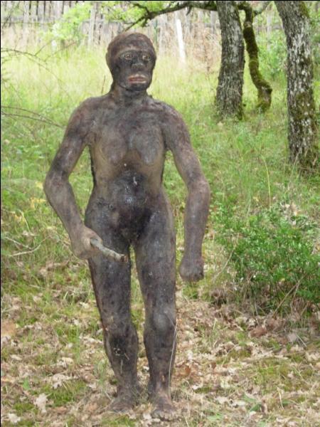 Qui sont les plus lointains ancêtres de l'homme apparus il y a 4 millions d'années ?