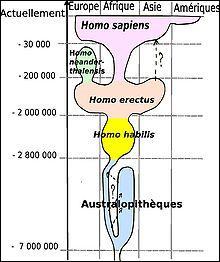 L'homme actuel : l'homo --------, est apparu il y a 200 000 ans.