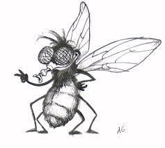 La mouche dans les expressions