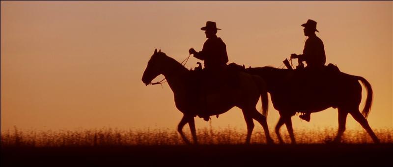 En 1992, Clint Eastwood réalise son quatrième et dernier western avec  Impitoyable . Quel est le point commun entre  Danse avec les loups  et  Impitoyable  ?
