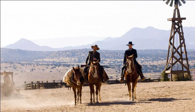 En 2008, Ed Harris réalise et joue dans  Appaloosa . Viggo Mortensen fait aussi partie de la distribution avec Renée Zellweger. Dans ce western, qu'est exactement  Appaloosa  ?