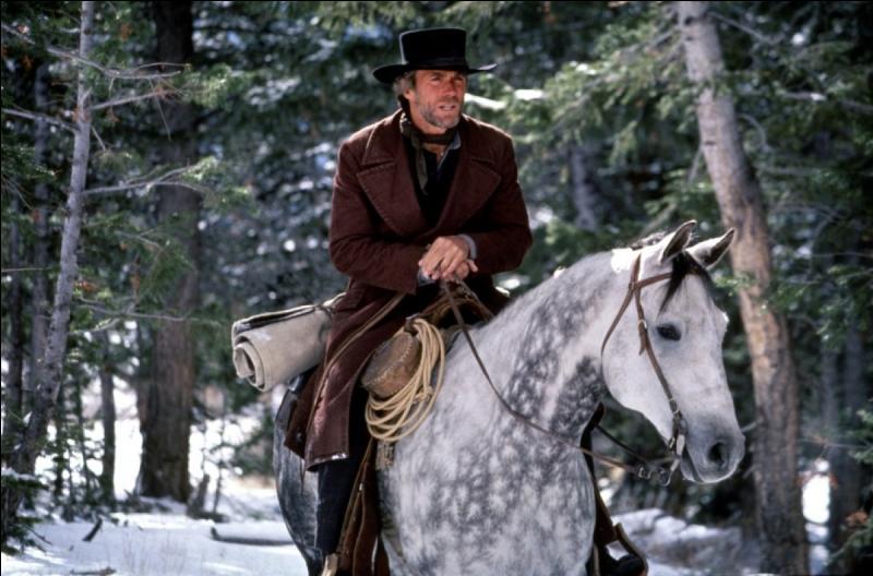 C'est à nouveau Clint Eastwood qui pérennise le genre, en 1985, avec le western  Pale Rider : le cavalier solitaire . Clint Eastwood incarne un pasteur. Comment se fait-il surnommer dans le western ?