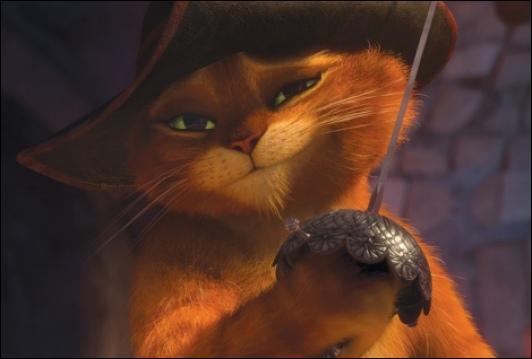 Qui est ce chat roux ?