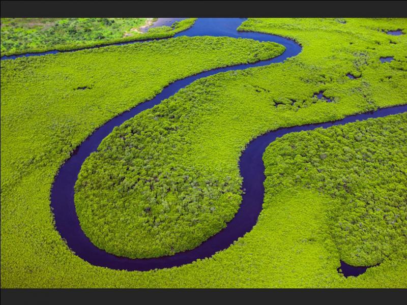 Les articles définis en espagnol sont  el  (le),  la  (la),  los  (les) et  las  (les). La phrase  la agua de los ríos es dulce  (l'eau du fleuve est douce) est-elle correcte ?