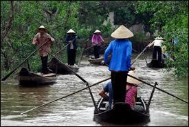 Quel fleuve né au Tibet sépare le Laos de la Thaïlande avant de se jeter dans la mer de Chine méridionale ?