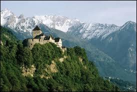 Un de ces pays n'est pas frontalier avec la Principauté du Liechtenstein. Lequel ?