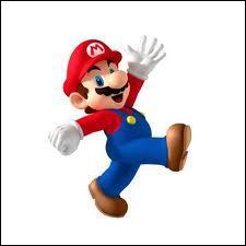Ce personnage est le héros d'un jeu vidéo. Quel est son nom ?