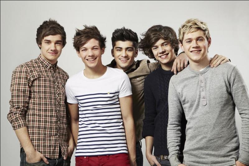 Ce boys band irrésistible a eu 2 prix aux NRJ Music Awards et a participé à  The X Factor .
