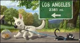 Dans quel film Mitaine, une chatte de gouttière, a-t-elle pour compagnons de voyage un chien et un hamster ?