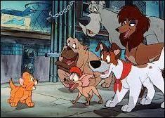 Dans quel film un chaton abandonné trouve-t-il du réconfort auprès d'une bande de chiens errants ?