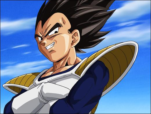 Qui est ce personnage appartenant au manga  Dragon Ball  ?