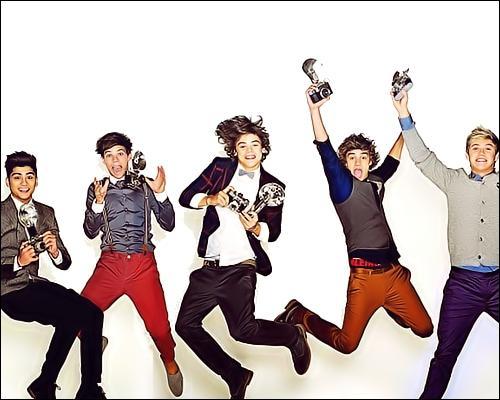 Comment appelle-t-on les fans des One Direction ?