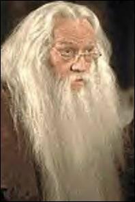 Qui joue le rôle d'Albus Dumbledore ? (Harry Potter 1 et 2)