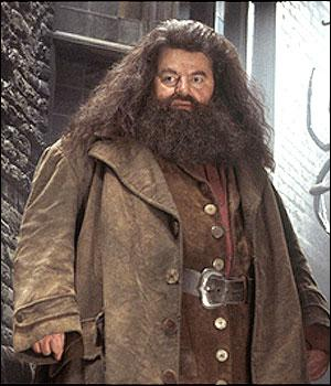 Qui joue le rôle d'Hagrid ?
