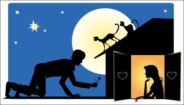 Alors-là c'est très facile, il y a deux singes sur le toit !
