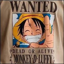 À combien s'élève la première prime de Monkey-D-Luffy ?