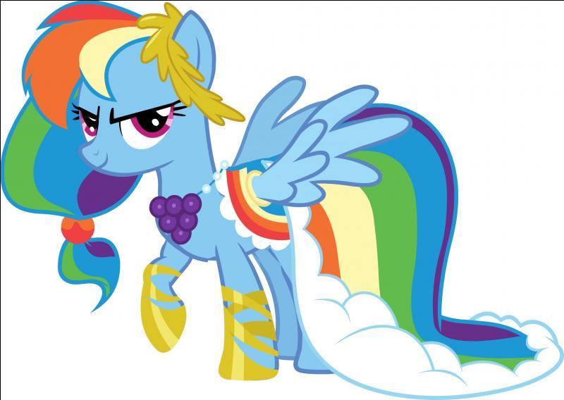 Comment est Rainbow Dash ?