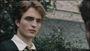 À quelle famille appartenait Cedric Diggory ?