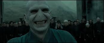 Qui joue le rôle de Voldemort ?