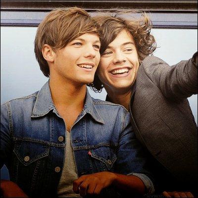 Quelle est la fiction de Louis et Harry ?