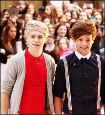 Quelle est la fiction de Niall et Louis ?
