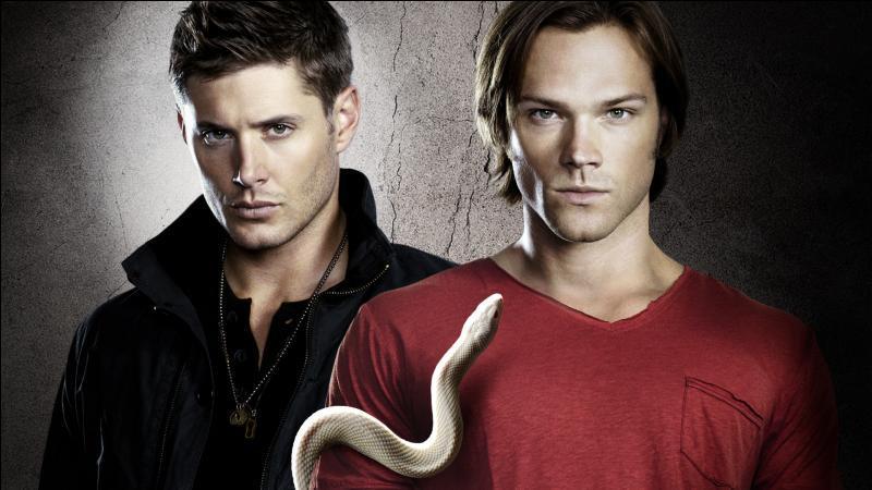 Supernatural. . !