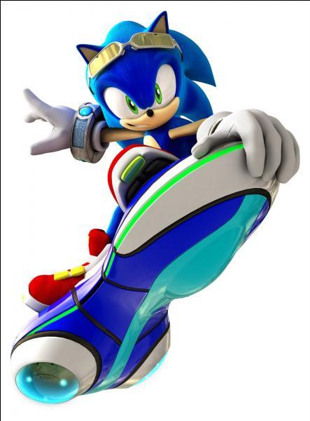 Dans Sonic le rebelle, Sonic est :