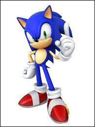 Quel est l'instrument dont Sonic joue ?