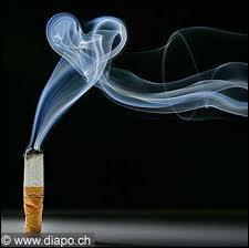 Retrouvez l'interprète grâce aux paroles :  L'amour c'est comme une cigarette. Ça brûle et ça monte à la tête. Quand on ne peut plus s'en passer. Tout ça s'envole en fumée...  .
